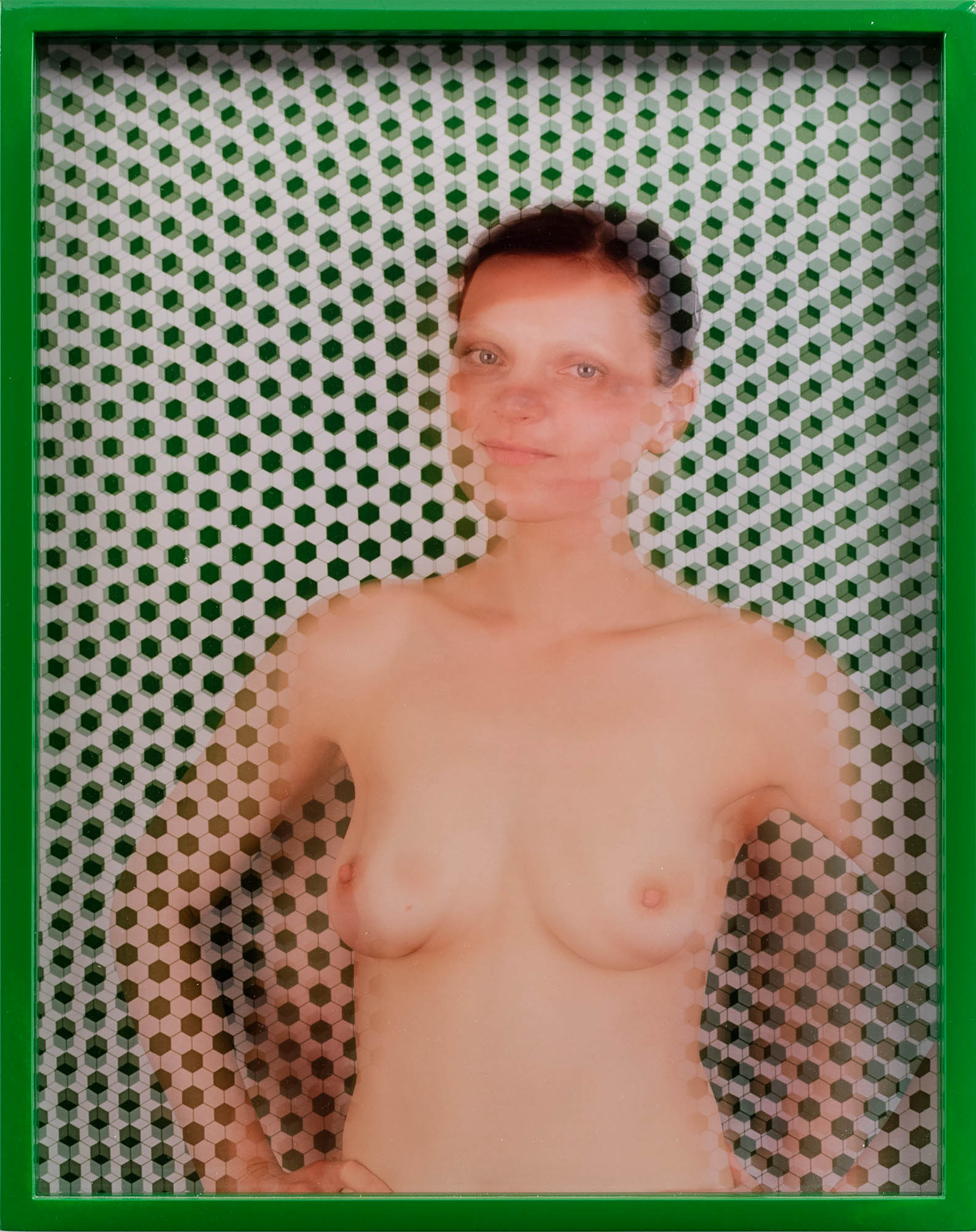 Image of Elad Lassry, Guinevere (Green), 2009