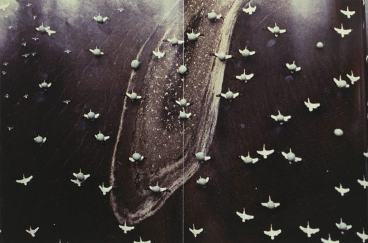 Gabriel Orozco, Migration, 1996