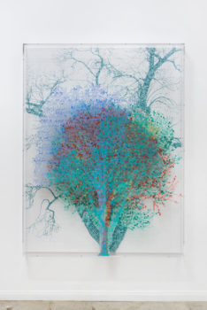 Image of Charles Gaines, Numbers and Trees: Central Park Series IV: Tree #7, Maria, 2017