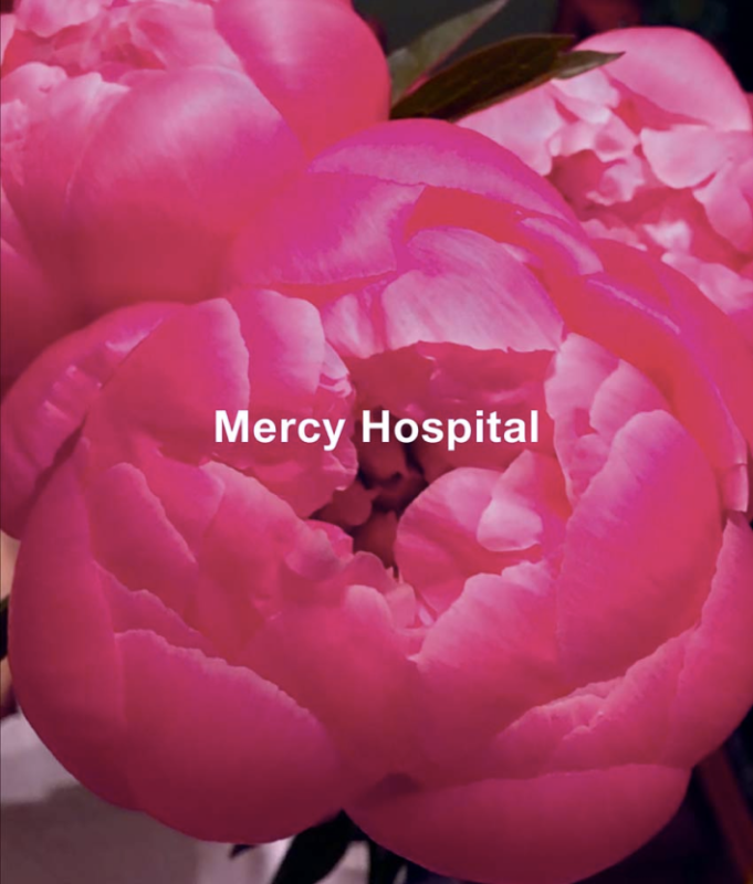 Ida Applebroog Mercy Hospital Catalogue