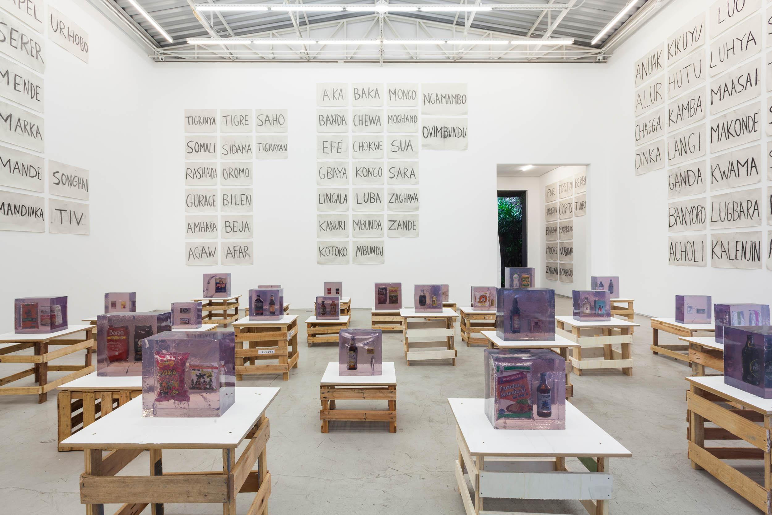 Installation view: Paulo Nazareth,