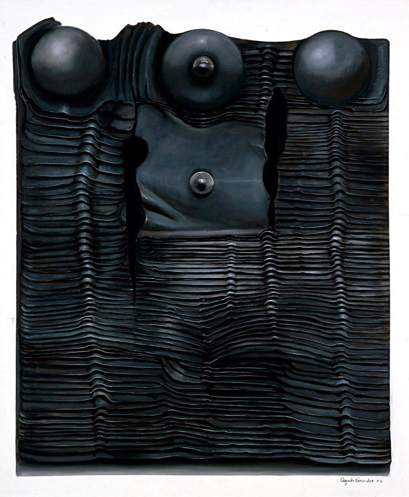 Agustin Fernández, Armadura, Serie #18, 1973. Oil on canvas. Blanton Museum of Art, The University of Texas at Austin, Archer M. Huntington Museum Fund.