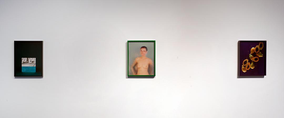 Elad Lassry, Guinevere (Green), 2009