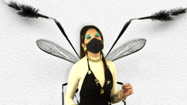 Screenshot from Vivian Caccuri, Mosquito Shrine II, 2020 for ICA Miami