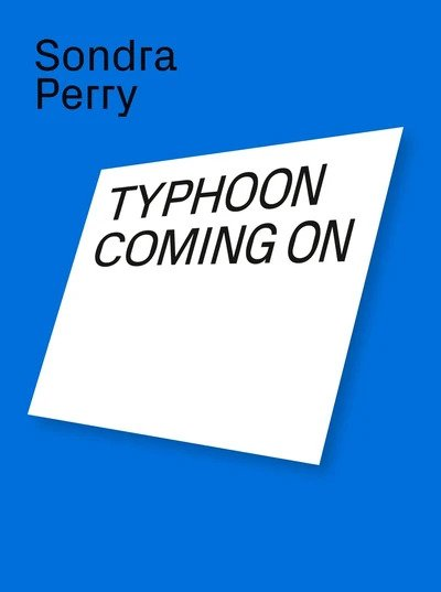 Sondra Perry, Typhoon Coming On